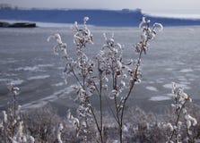 congel? el agua en el r?o siberiano imagenes de archivo