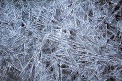 congelado Imagenes de archivo
