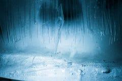 congelado Foto de Stock Royalty Free