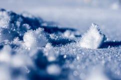 congelado Fotografia de Stock