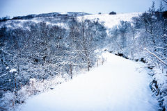 Congelado, paisaje de la nieve en Islandia Imagen de archivo libre de regalías