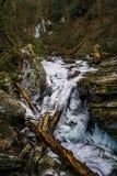 Congelado poucos Stony Creek e restos imagens de stock