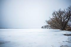 Congelado sobre el lago del oso adyacente al lago Michigan Fotos de archivo