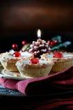 Congelado triture tortas II Foto de Stock Royalty Free