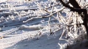 Congelamento filme
