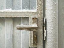 Congelato e coperto di ghiaccio Fotografia Stock