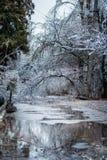 Congele a chuva Imagem de Stock
