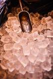 Congele com a colher na cubeta de gelo, preparação do gelo em uma barra para o partido do evento Imagens de Stock Royalty Free