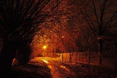Congele na estrada e nas árvores Fotografia de Stock Royalty Free