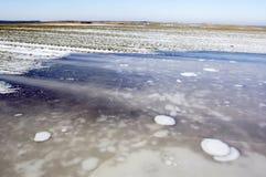 Congele no campo agricultural Imagens de Stock Royalty Free