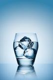 Congele no vidro da vodca. Imagens de Stock Royalty Free