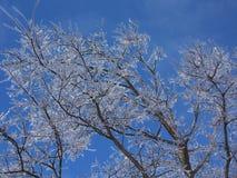 Congele nos céus imagens de stock royalty free
