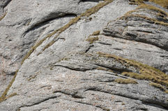 Conglomerate rocks. Sedimentary rock texture Royalty Free Stock Photo