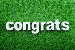 Congrats由具体字母表顶视图做了在绿草 库存照片