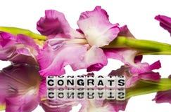 Congrats con las flores rosadas foto de archivo