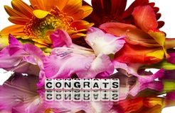 Congrats with flowers. Congratulations with flowers and wishes royalty free stock image