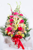 Congratulate vase. Colorful flowers in the vase for congratulate Royalty Free Stock Photos