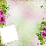 Congratulation card. Background for congratulation card or frame for photo Stock Images