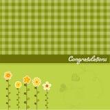 Congratulation floral card Stock Photography