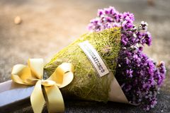 Congratulation flower bouquet royalty free stock photography