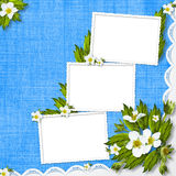 Congratulation with frame and flowers Stock Photography