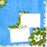 Congratulation with frame and flowers Royalty Free Stock Photography