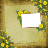 Congratulation with frame and yellow flowers Royalty Free Stock Photos