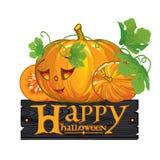 Congratulation with Happy Halloween Stock Photo