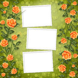 Congratulation with painting rose Stock Photo
