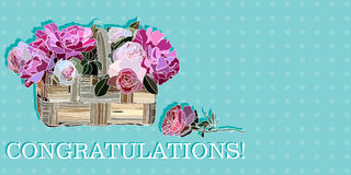 Congratulation with roses in a basket Stock Photos