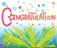 Congratulation star coconut leave Royalty Free Stock Photos