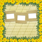 Congratulation to the holiday with slides. And yellow flowers Stock Photos