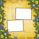 Congratulation to the holiday with yellow flowers Royalty Free Stock Images