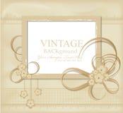 Congratulation  vintage background Royalty Free Stock Photos