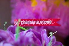 Congratulations banner card Royalty Free Stock Photos