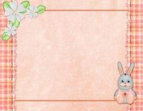 Congratulations Card vector illustration
