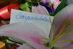 Congratulations message Royalty Free Stock Images