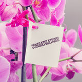 Congratulations note with a floral bouquet Stock Photos