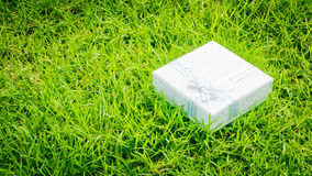 Congratulations Topic: pretty white box with a white ribbon with gifts lying on green grass Royalty Free Stock Photo