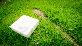 Congratulations Topic: pretty white box with a white ribbon with gifts lying on green grass Royalty Free Stock Image