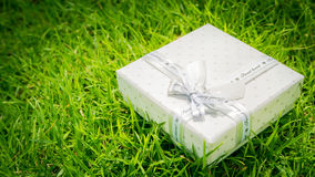 Congratulations Topic: pretty white box with a white ribbon with gifts lying on green grass Royalty Free Stock Images
