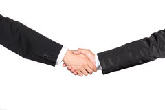 Congratulatory with a handshake. Business collaboration, on white background Royalty Free Stock Image