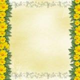 Congratulazione con il blocco per grafici ed i fiori gialli Fotografia Stock
