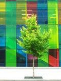 Congres dat Montreal bouwt Stock Foto