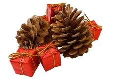 Coni dei pini e contenitori di regalo di natale Immagini Stock Libere da Diritti