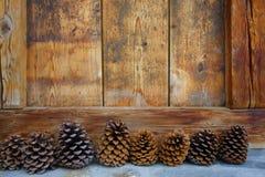 Coni del pino Immagini Stock