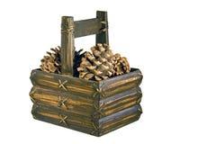 Coni del pino in cestino isolato Fotografie Stock Libere da Diritti