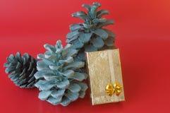Coni del pino di natale e contenitore di regalo Fotografia Stock Libera da Diritti
