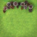 Coni di abete e del pino sul fondo vibrante di pendenza del feltro di verde Fotografia Stock Libera da Diritti