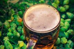 Coni di luppolo del fondo della birra fredda della pinta Fotografia Stock Libera da Diritti